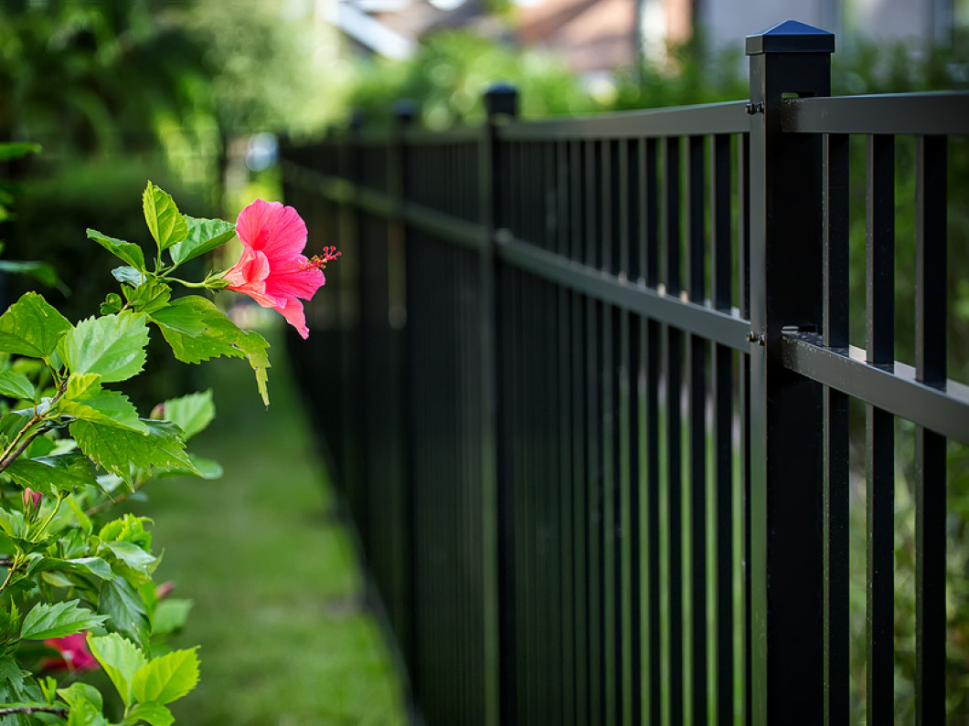 Need an Affordable Fence That Will Last?